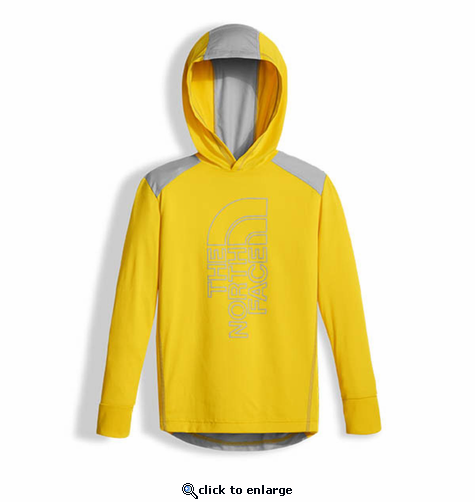 The North Face Boys Long-Sleeve Reactor Hoodie