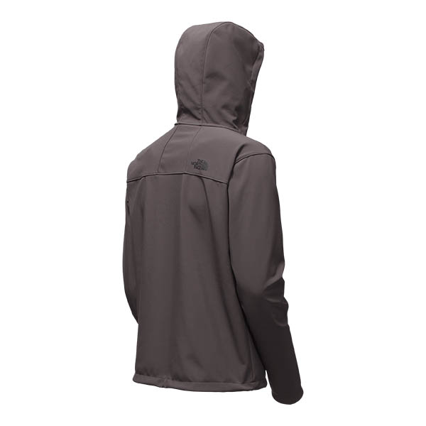 f5439149575f The North Face Men s Apex Bionic 2 Hoodie - The Warming Store