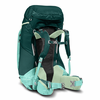 The North Face Women's Banchee 65 Backpack Bag