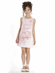 Biscotti A Rose Is A Rose Pink Sleeveless A Line Dress
