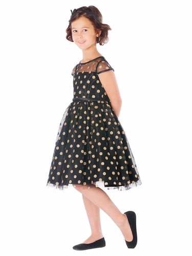 Black Glitter Polka Dot Mesh Dress