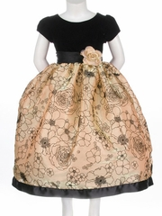 Black Velvet Top w/ Flocked Gold Organza Skirt