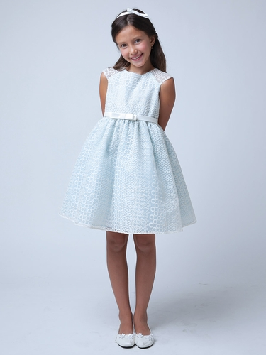CLEARANCE - Blue Circle Embroidered Organza Dress