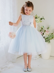 Blue Lace & Tulle Dress