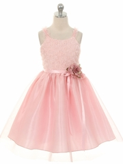 Blush Embroidered Mesh Rose Dress w/ Tulle Skirt