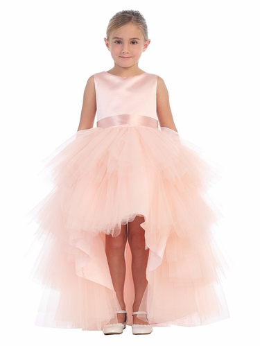Blush Ruffled Tulle High Low Dress