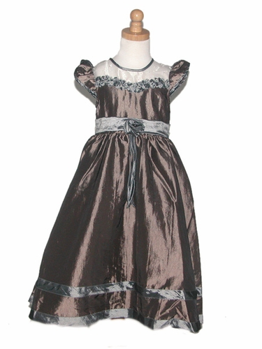 Brown Dress/Silver Rose Taffeta Dress w/Cap Sleeves