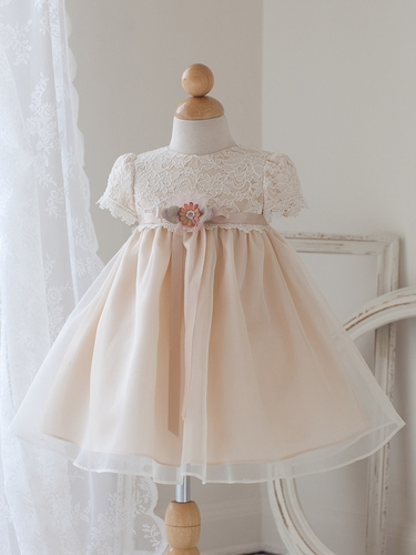 Champagne Cap Sleeve Dress w/ Lace Bodice
