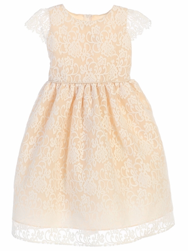 Champagne Classic Floral Embroidered Organza Dress