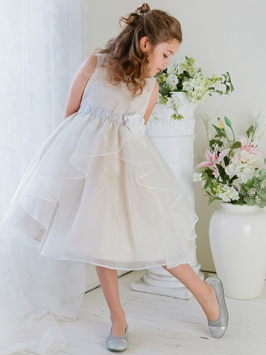 Champagne Double Layered Organza Dress w/ Embroidered Bodice
