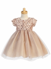 Champagne Ribboned Tulle Dress w/ Tulle Skirt