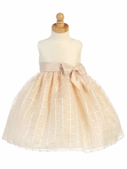 Champagne Shantung & Organza Dress w/ Bow
