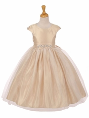 Champagne Shiny Tulle Dull Satin Rhinestone Dress