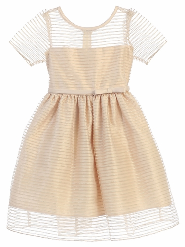 Champagne Striped Metallic Organza Dress