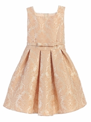 Champagne Vintage Baroque Pleated Jacquard Dress