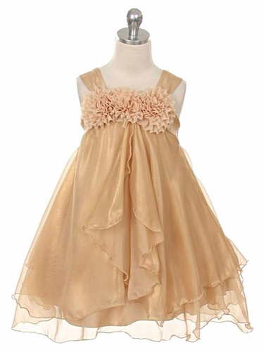 Gold Shiny Chiffon Dress