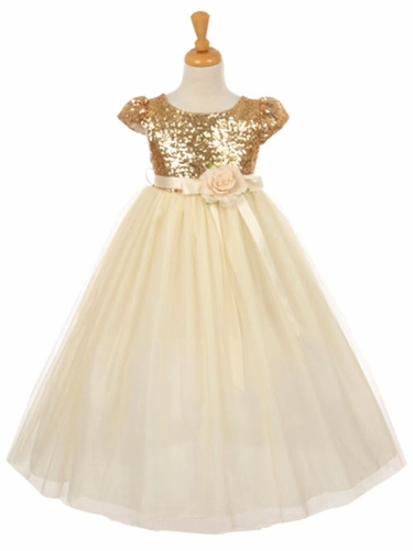 Gold Short Sleeve Sequins & Tulle Dress