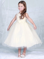 Ivory Embroidered Mesh Bodice w/ Tulle Dress