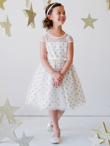 Ivory Glitter Polka Dot Mesh Dress