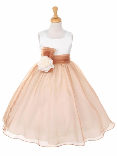 Champagne Satin Bodice w/ Organza Skirt Dress