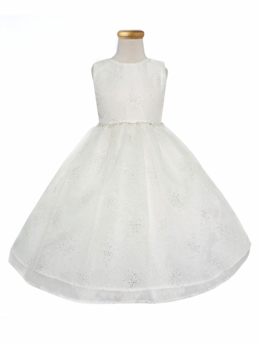 Ivory Star Dust Organza Dress