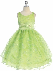 Lime Two Layer Embroidered Organza Dress
