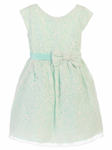 Mint Bouquet Embroidered Organza Dress