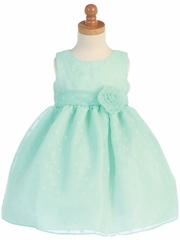 Mint Polka Dot Burnout Organza Dress