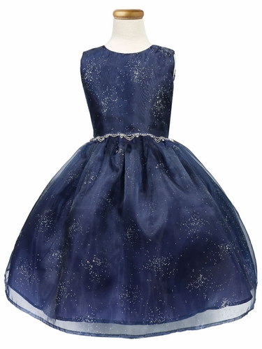 Navy Blue Star Dust Organza Dress