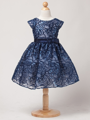 Navy Sequin & Embroidery Organza Dress