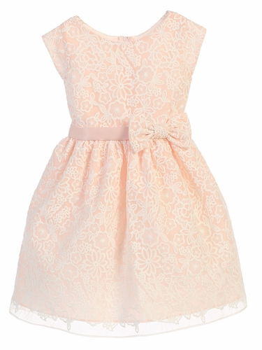 Petal Pink Bouquet Embroidered Organza Dress