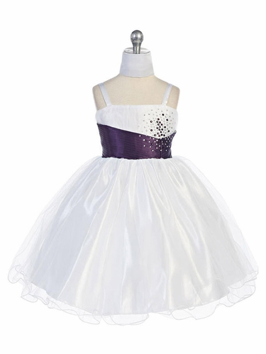 Plum Mini Stoned Tulle Dress