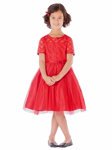 Red Cross Hatch Satin & Mesh Dress