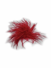 Red Ostrich Feather Clip