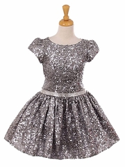 Silver Cap Sleeve Sequins Dress