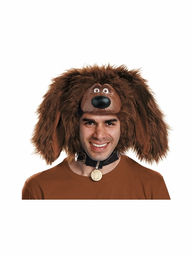 The Secret Life Of Pets Duke Adult Headpiece