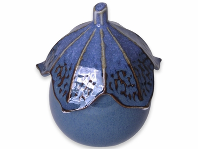 Eggplant –Shaped Ceramic Bowl with a Lid in Blue
