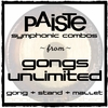 CLICK HERE For Paiste Symphonic Gong, Stand, & Mallet Combos | GONGS UNLIMITED EXCLUSIVE