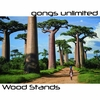 "Wood Gong Stands for up to 48"" Gongs"