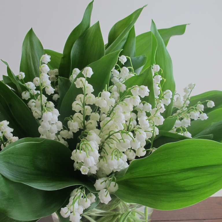 Lily Of The Valley Bouquet: May Flowers Toronto; Bouquet Of White Lilies Of The Valley