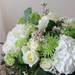 Posh White Flowers