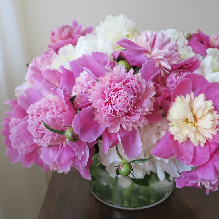 June Flowers: June Flowers Toronto; Cool June Bouquets From GeniusLoci
