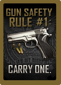 Gun Safety #1