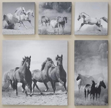 5 PC Canvas Horse Prints