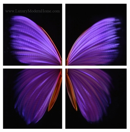"Purple Butterfly - 32"" x 32"""