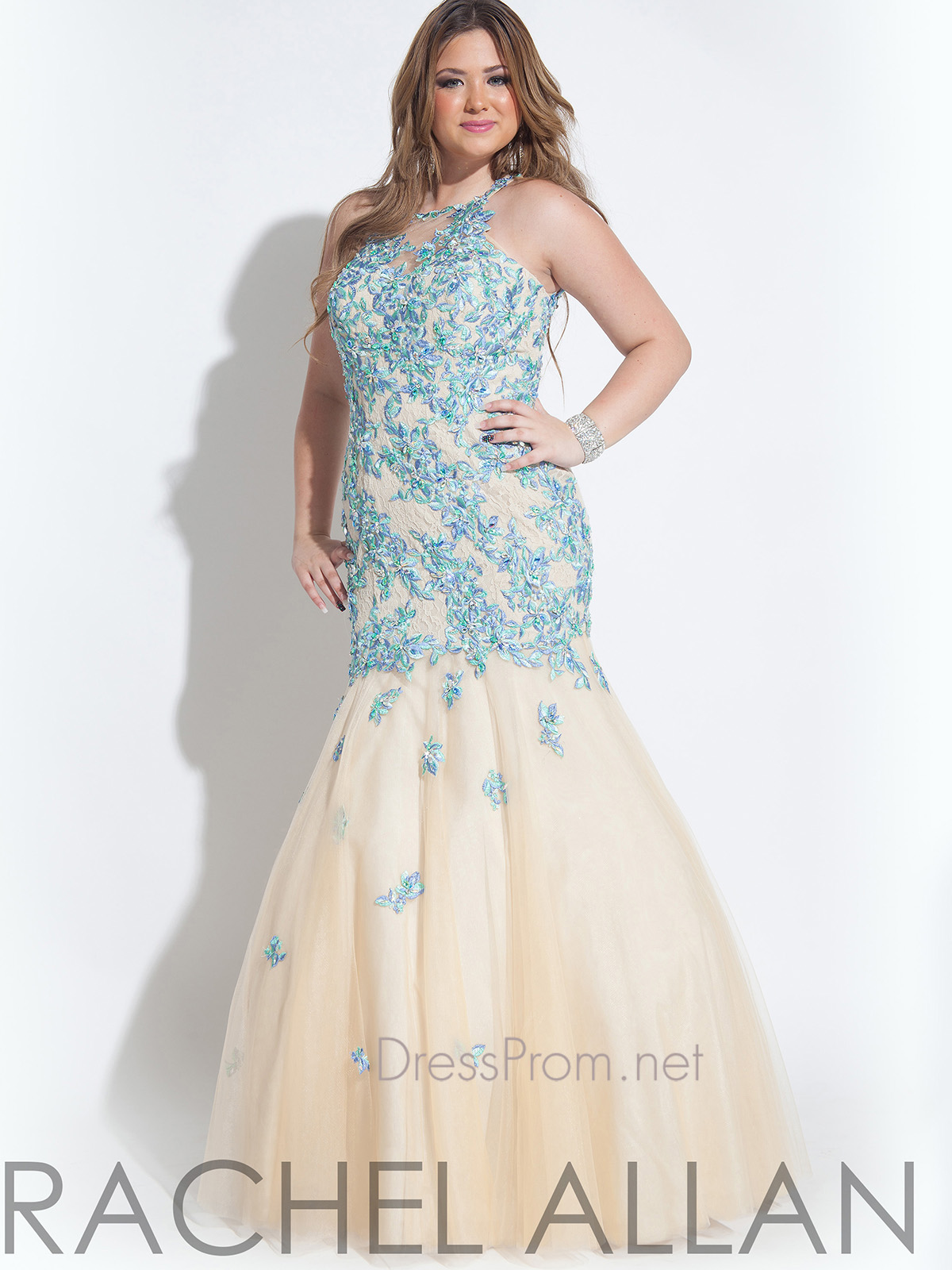 Modern Plus Size Prom Dresses Chicago Collection - Wedding Dress ...