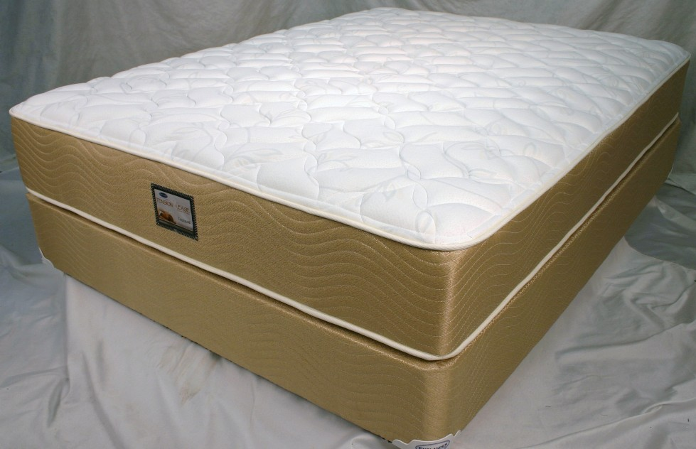 Full size mattress only no box spring queen caress visco for Englander mattress