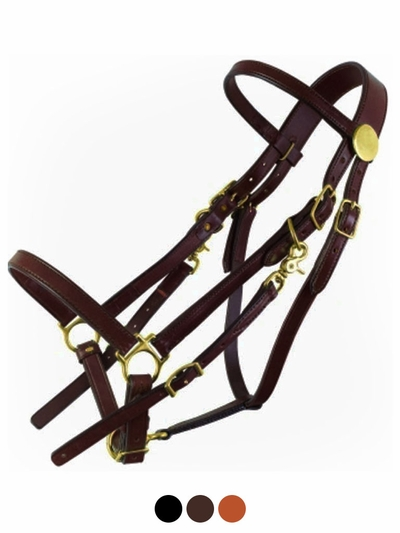 Tucker Large Horse Halter Bridle 325