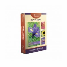 12 Pack Birthday Cards w/ Message and Scripture