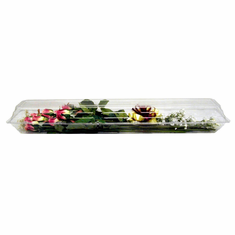 "30"" Clear Plastic<br>Rose Boxes <br>50/Case"